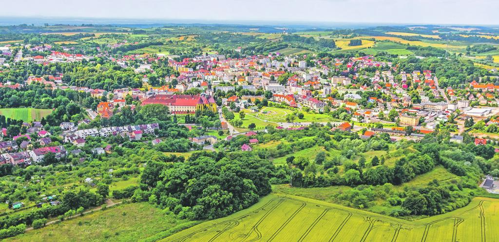 Panorama Trzebnicy.jpeg