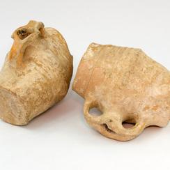 Galeria Homo Erectus