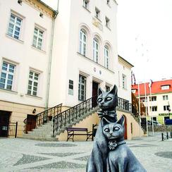 Galeria Kocia ścieżka