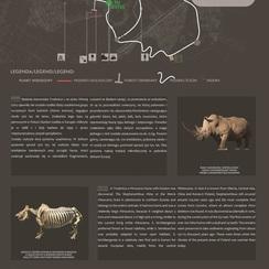 Galeria Homo erectus tablice