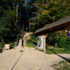Galeria srodowisko-lasy